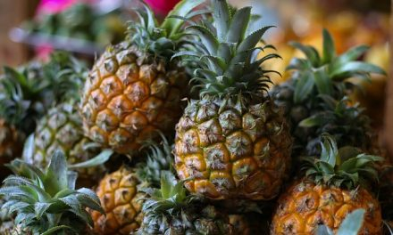 All about the Pineapple Diet – Great for Weight Loss