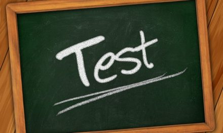 What do personality tests reveal
