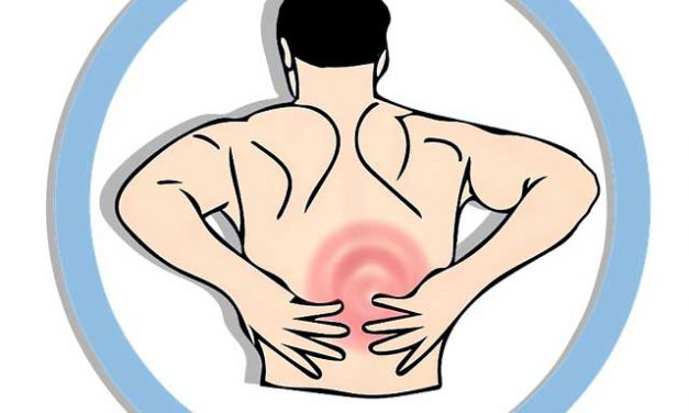 Foods That Can Help You Prevent Back Problems